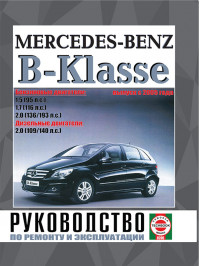 Mercedes B-class with 2005, book repair in eBook